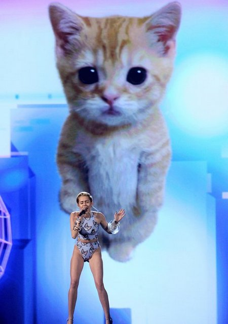 miley-wrecking-ball-cat