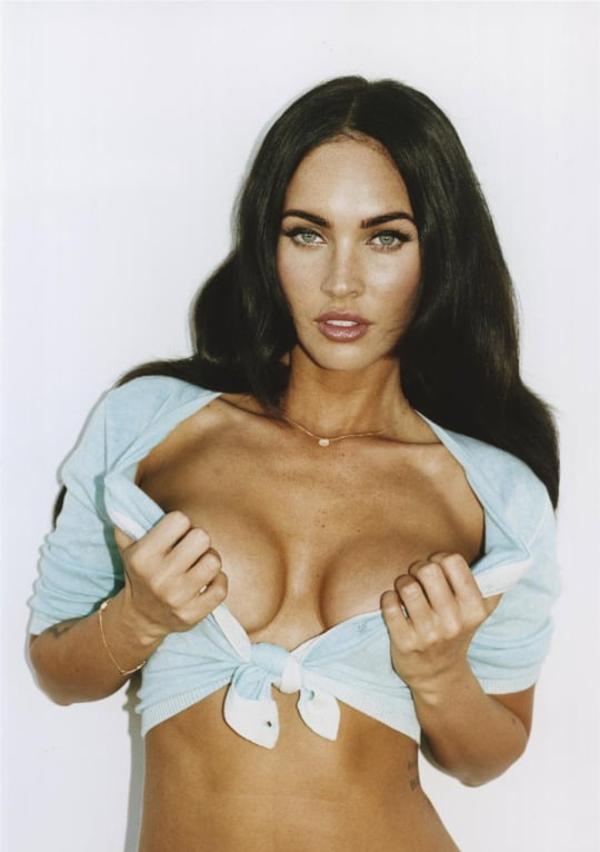 Megan Fox Hottest Pics (39)
