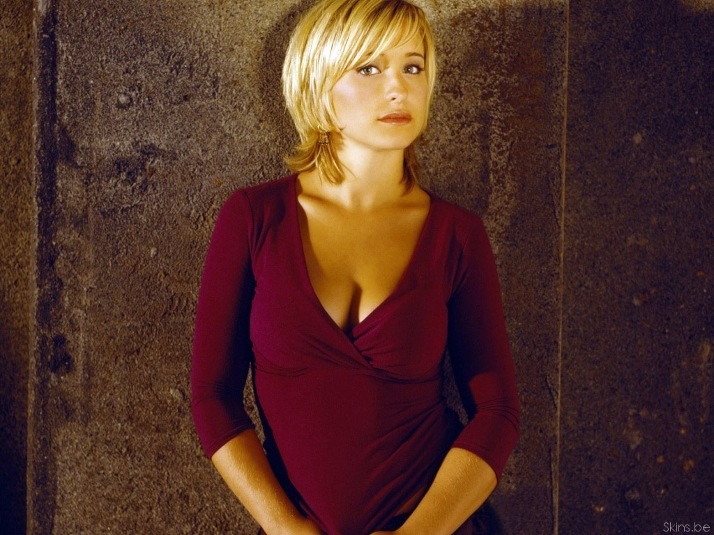 Allison Mack Sexy Photos (15)