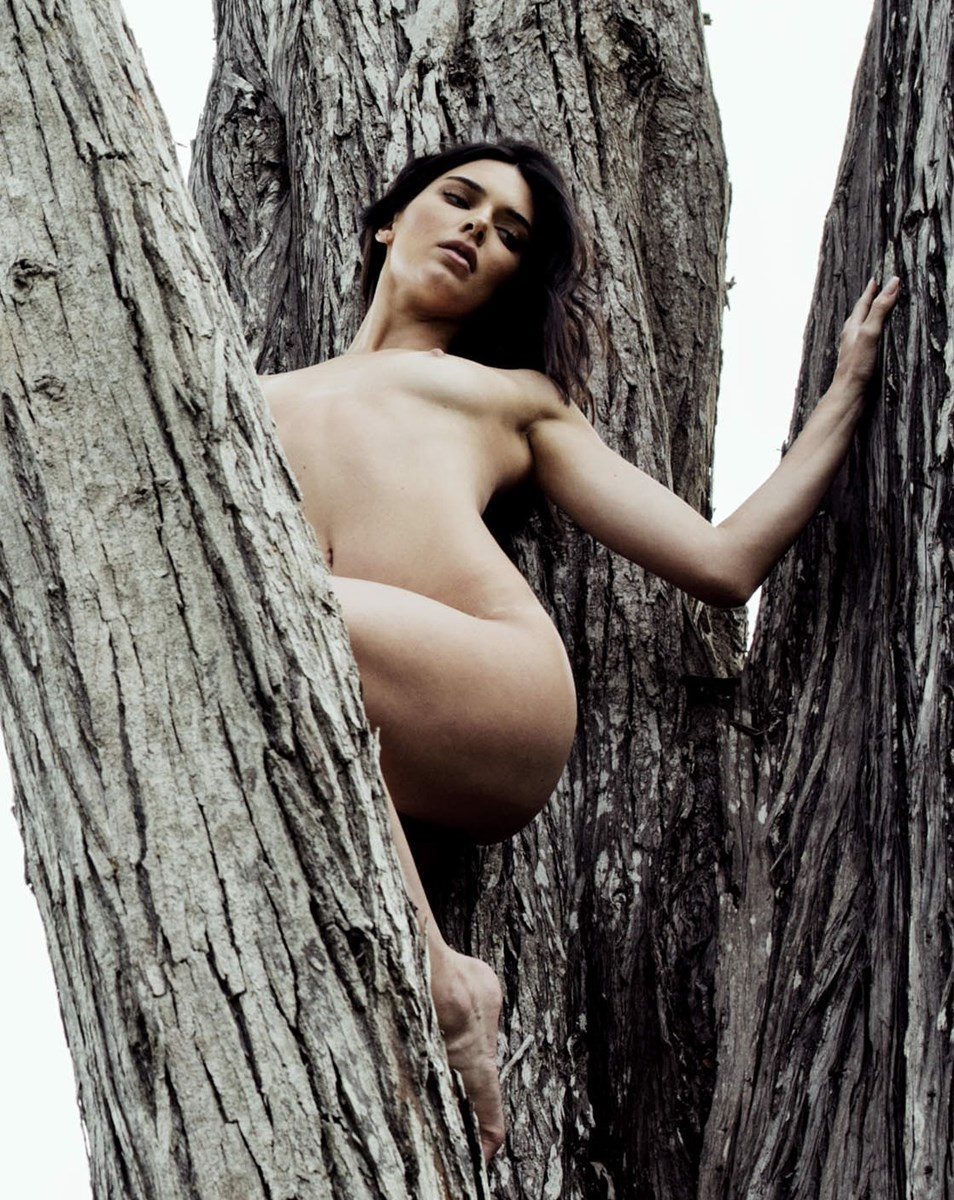 Kendall Jenner sexy nude picture