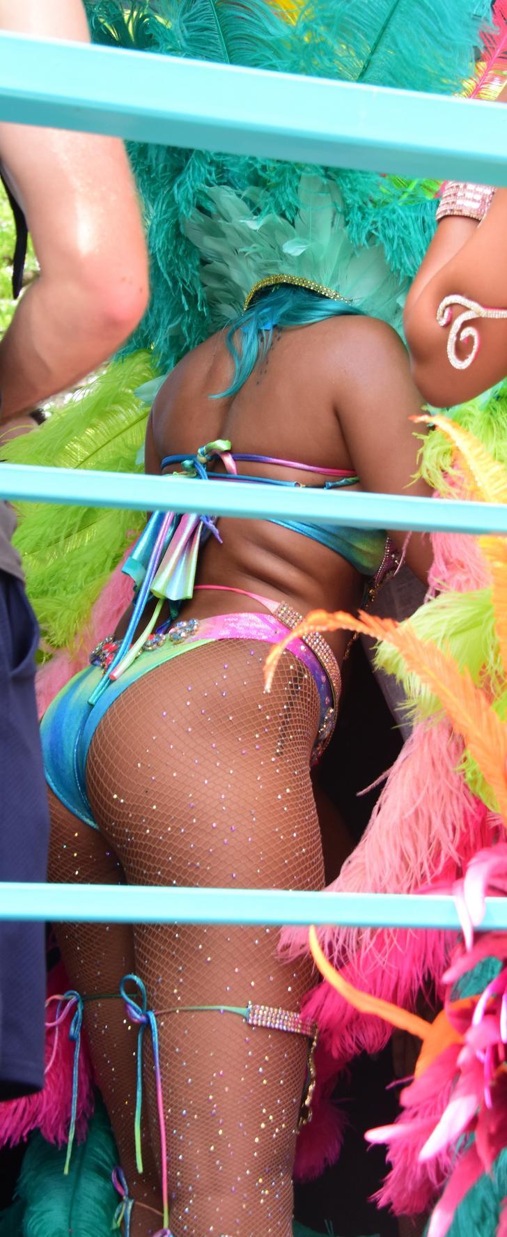Rihanna hairy pussy