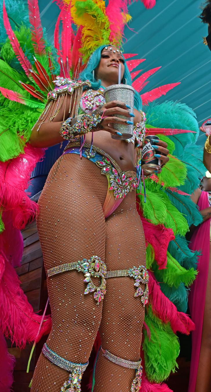 Rihanna vagina lips cleavage